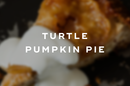 3. Turtle pumpkin pie