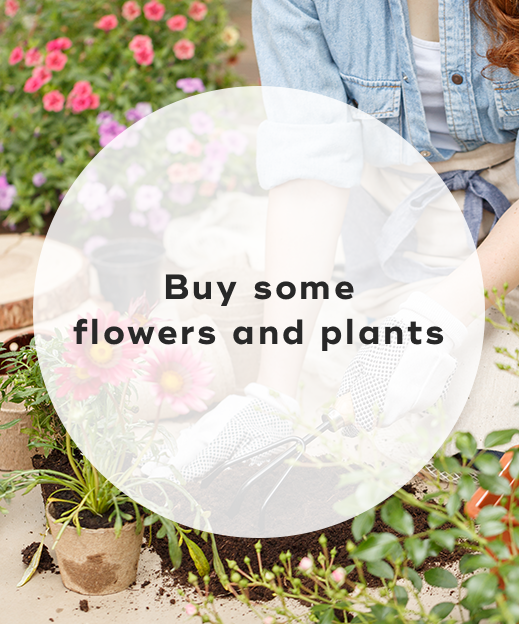 4. Buy some flowers and plants