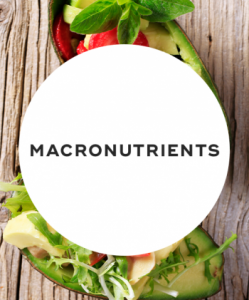 Don't forget about macronutrients