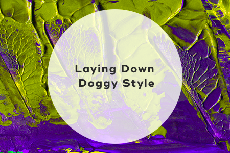 6. Laying down doggy style