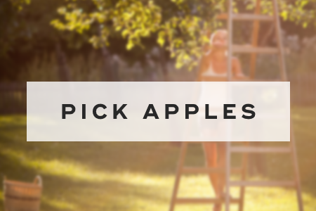 6. Pick apples