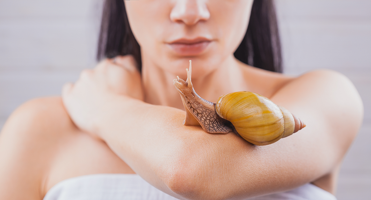 Benefits of snail filtrate